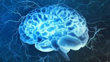 Ascension Succès _ Bruce Lipton _ Comment activer 100% de votre cerveau Pic