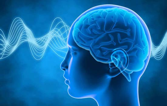 Nous possédons tous 6 capacités mentales : la perception, la volonté, la raison, l'imagination, la mémoire et l'intuition.