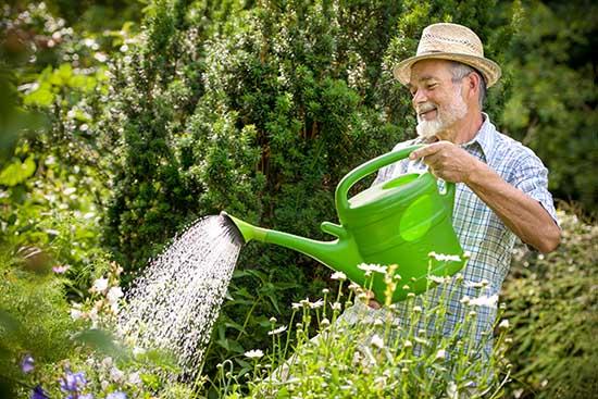 Les plantes réagissent à votre énergie. Elles seront un bon indicateur pour savoir si vous êtes dans une bonne énergie ou non.